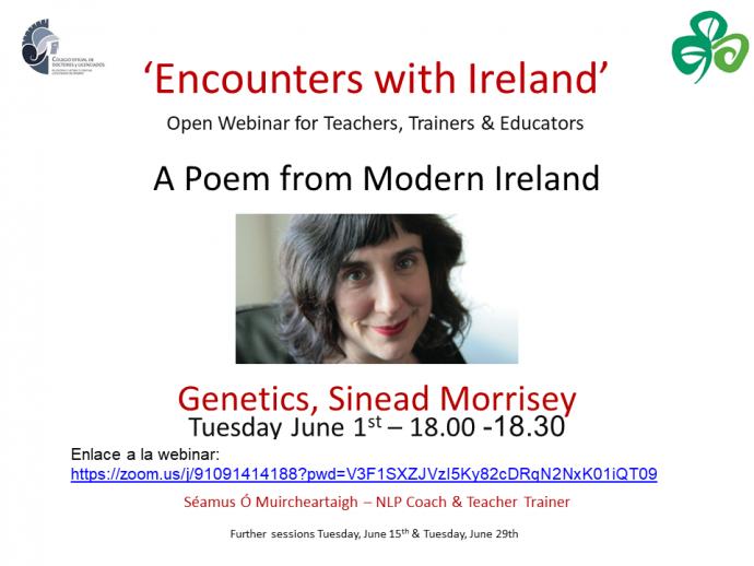 webinar-irlanda-1-junio